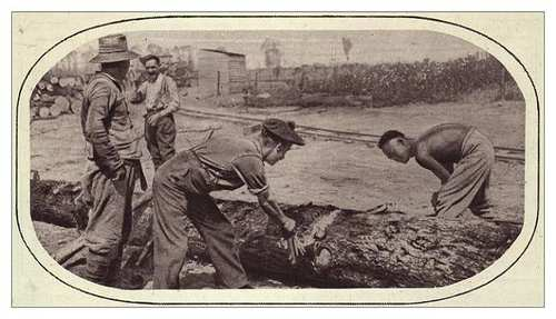 2illustrated_war_news_-_chinese